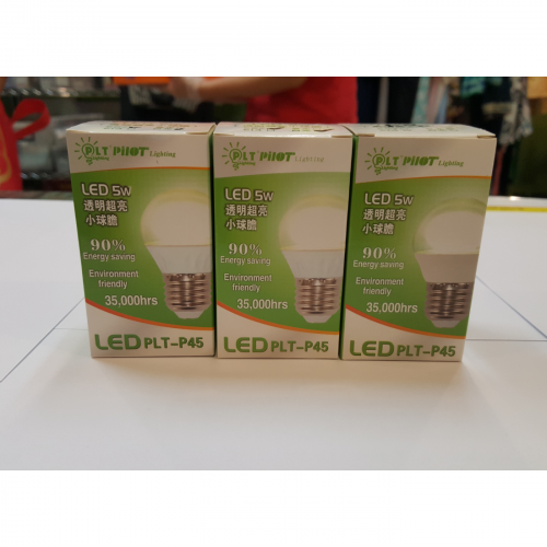 LED Light Bulb (5w)